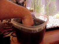 Bioseeding beneficial bacteria donor germs