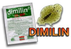 Dimilin for Koi and Pond fish parasites