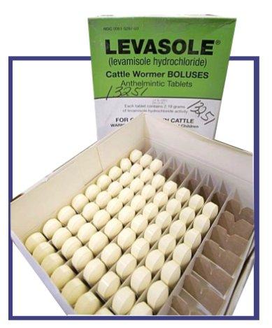 Levamisol / Tramisol will not kill flukes