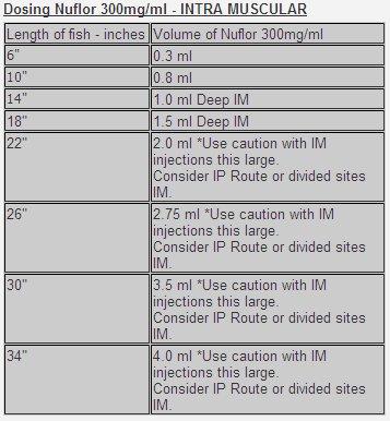 Nuflor florfenicol dosing chart for IM injection